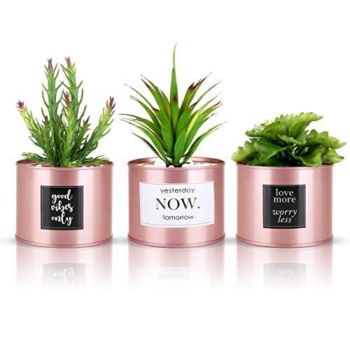 Kesote 3X Sukkulenten Künstlich mit Topf Rosegold Kunstpflanzen im Topf Pflanzen Kaktus Klein Deko für Büro Zuhause (Aufkleber Zufällig)