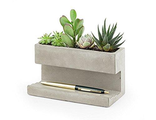 Kikkerland PL02-L Pflanzentopf aus Beton für am Schreibtisch, Go Green im Büro, hält Stifte und Visitenkarten, größe 16,3x9,1x8 cm.
