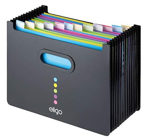 Eligo Archivbox, Ordnungsmappe A4 aus Kunststoff mit 13 Fächern im Querformat