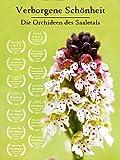 Verborgene Schönheit - Die Orchideen des Saaletals