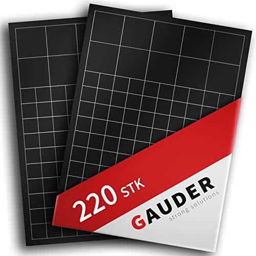GAUDER Magnetplättchen selbstklebend | Magnetstreifen | Magnetische Plättchen für Fotos, Postkarten & Schilder (220x Quadrate)