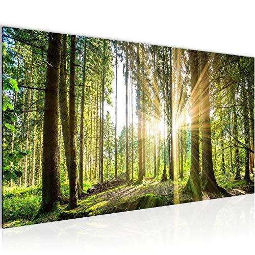 Wandbild Wald Landschaft Modern Vlies Leinwand Wohnzimmer Flur Sonne Grün